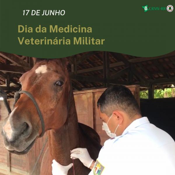 CRMV-RR parabeniza os Médicos-Veterinários Militares de Roraima