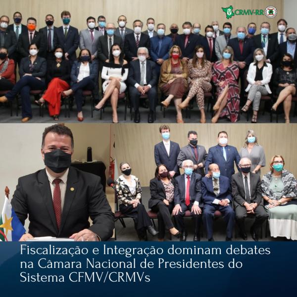 Fiscalização e Integração dominam debates na Câmara Nacional de Presidentes do Sistema CFMVCRMVs