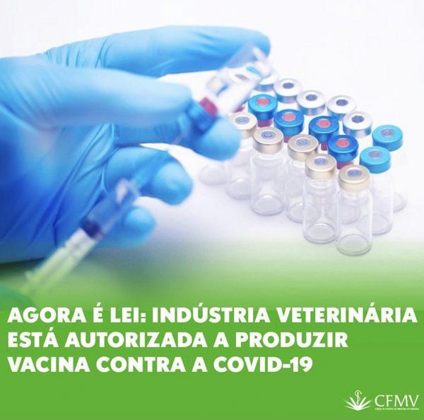 Agora é Lei: Indústria veterinária está autorizada a produzir vacina contra Covid-19
