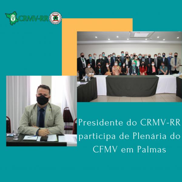 Presidente do CRMV-RR participa de Plenária do CFMV em Palmas